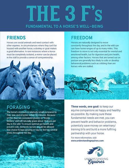 Understanding Equines 3 Fs Infographic