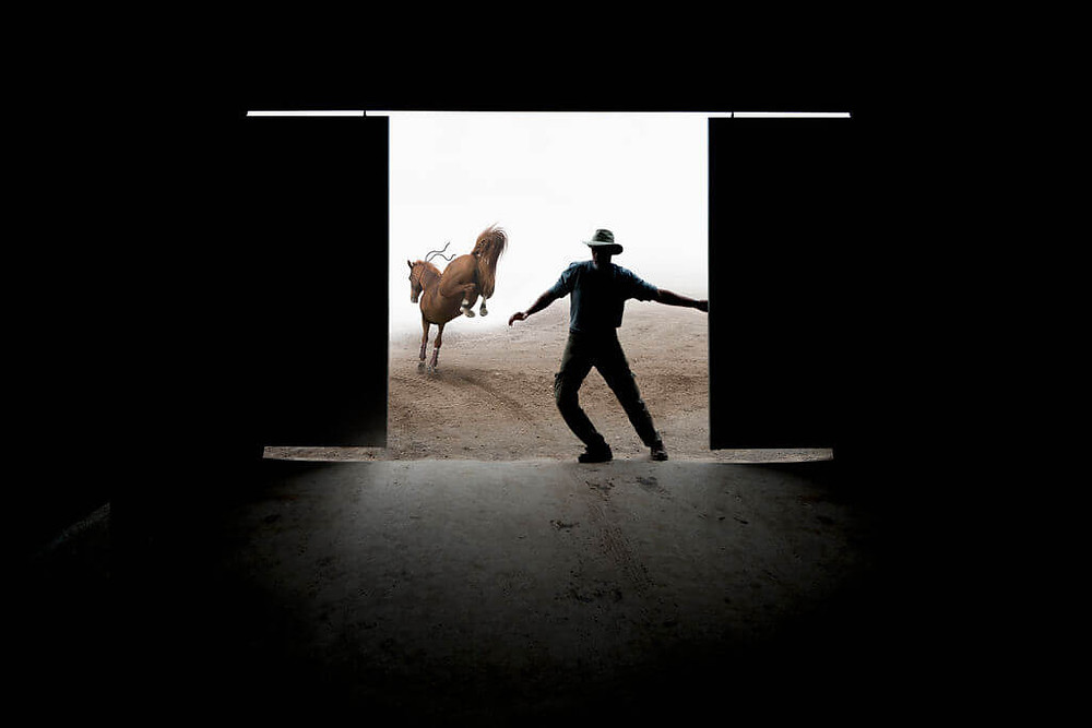 bucking horse leaving stable with man silhouette