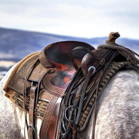 Naughty Horse? Check Your Tack.