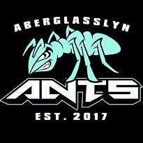 Aberglasslyn Ants.jpg