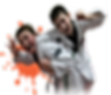 боевые искусства, каратэ, дзюдо, самбо