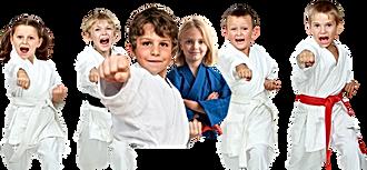 Секции борьбы, каратэ, самбо, дзюдо