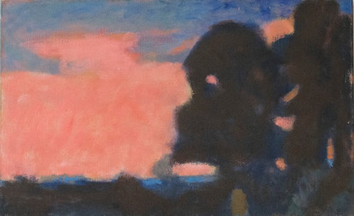 Peter Crabtree - Red Sky On Condor Green