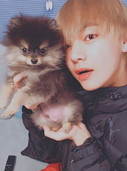 K-Pop Idols Who Are Deeply In Love with Dogs