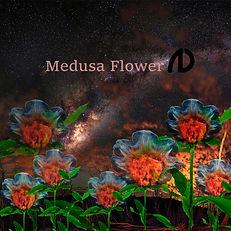 Medusa Flower.jpg