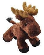 Moose 3.jpg