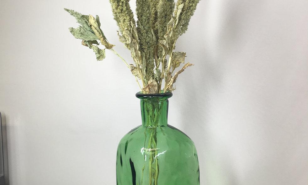 Dried Amaranthus Stem