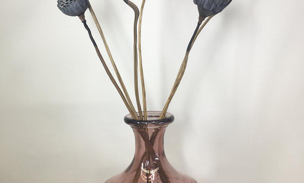 Dried Lotuskop Stem