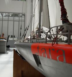 Tara expedition