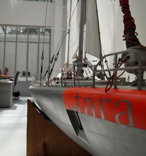 0 - TARA 2.jpg