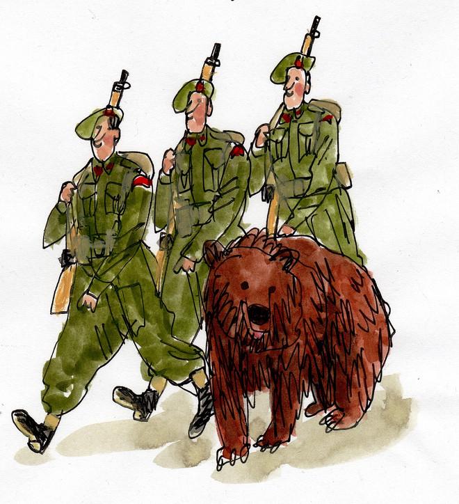 Wojtek the bear