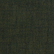 084139548 DARK BOTTLE GREEN