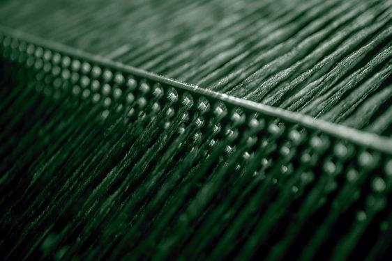 The Green Thread_023_vn_edited.jpg