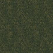 RF5500692 GRASS FIELD GREEN