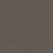 RF5575273 GRAINY TEXTURE GREY