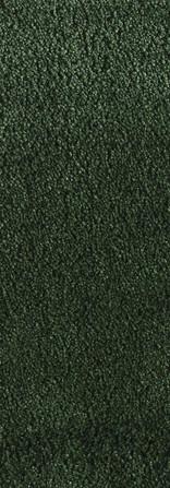 0845350 BOTTLE GREEN