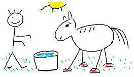 HORSE%20COLOR_edited.jpg