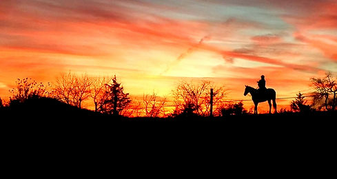 sunset trail ride, pinnacle stables, specialty, custom, juro, stables, near me, lucky ladd farms, bat building