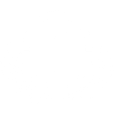 icon-best.png