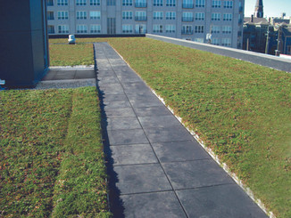 Green & Vegetative Roof Systems