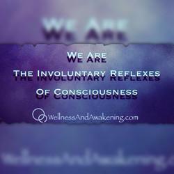 Involuntary Reflexes