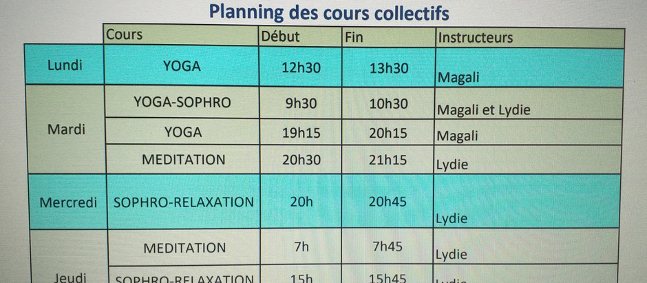 Planning du Studio Virtuel Simismo