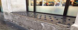 Anti-homeless spikes on a window ledge outside a shop