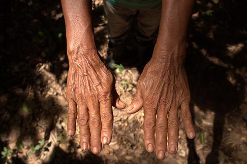 Mão 1.CR2
