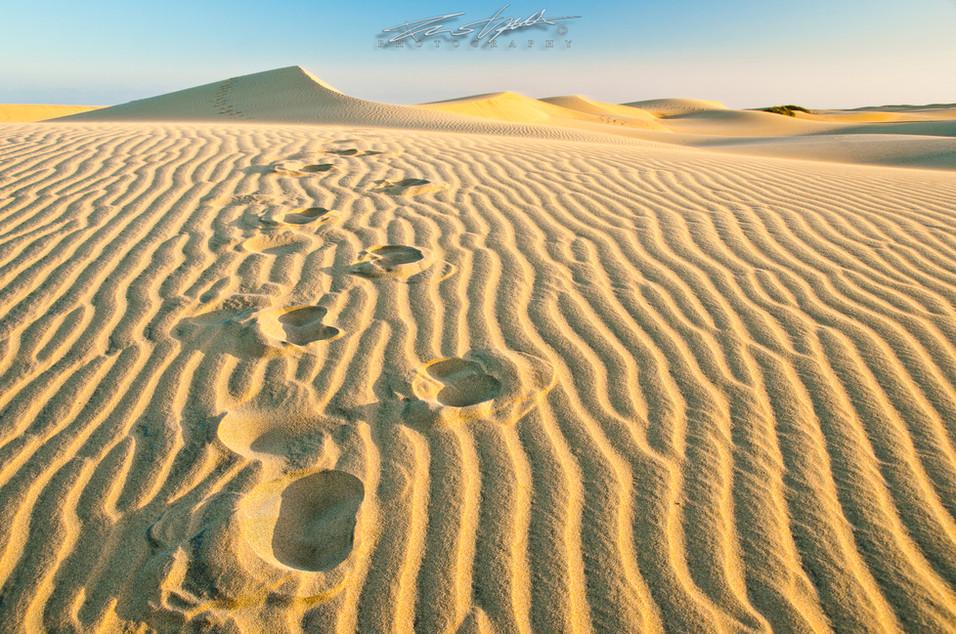Nel deserto di Maspalomas