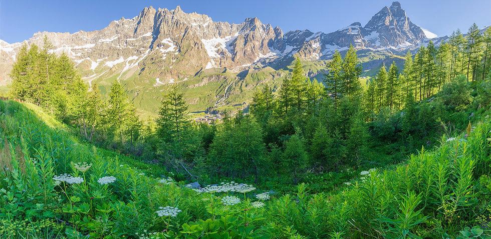 Panorama Cervino.jpg