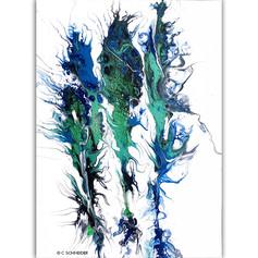 """""""Ocean blooms"""" © C Schneider"""
