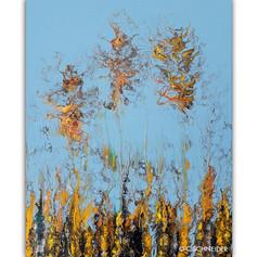 """""""Prairie Embers"""" © C Schneider"""