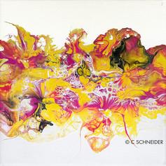 """""""Kissed Corolla"""" © C Schneider"""