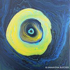 """Ocularis"" © Samantha Butcher"