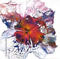 """Belle Fleur Two"" © Samantha Butcher"