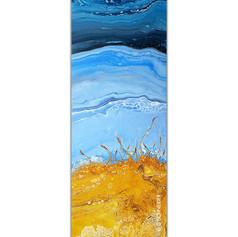 """""""Sand Dunes & Salty Air"""" © C Schneider"""