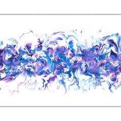 """""""Violet Corolla"""" © C Schneider"""