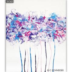 'Hydrangea Corolla' © C Schneider
