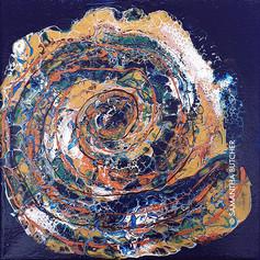 """Shell"" © Samantha Butcher"