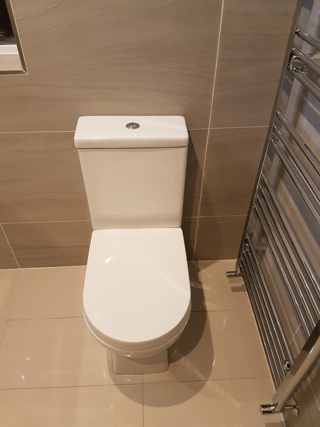 Contemporary toilet