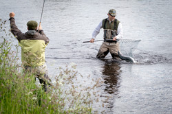 Salmon Fishing River Spey Scotland