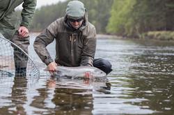 Salmon Fishing River Dee Scotland