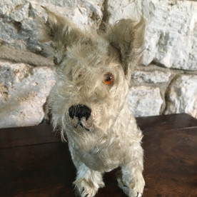 Vintage White Terrier