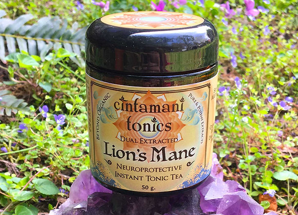 Lion's Mane Dual Extract ~ Pure Fruiting Body