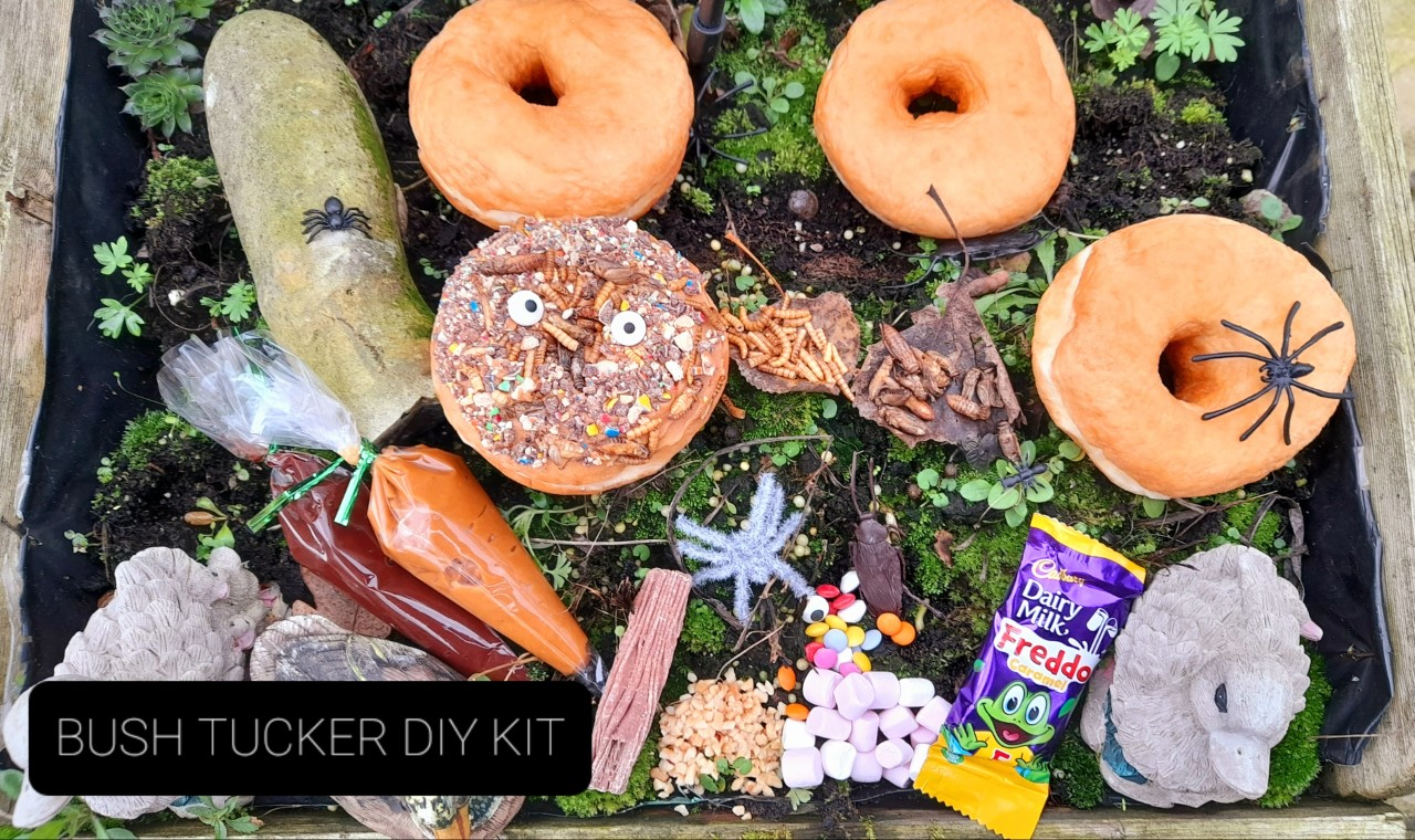 Bush Tucker Trial DIY Donut Kit