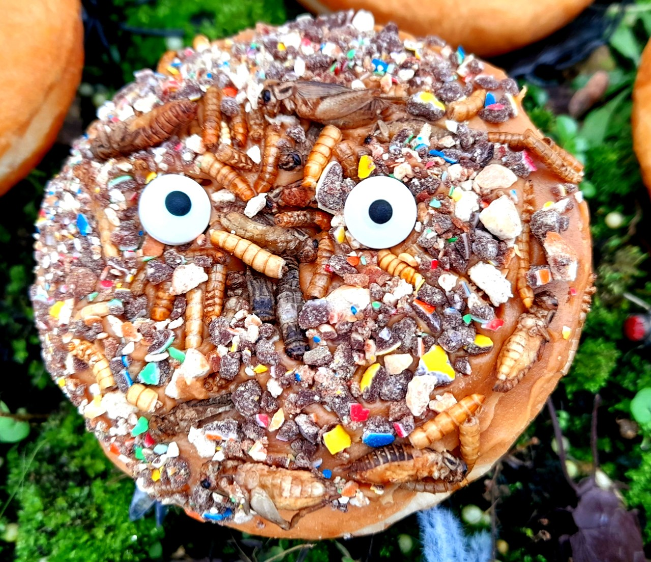 DIY Bush Tucker Donut