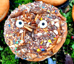 DIY Bush Tucker Donut