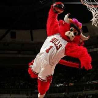 Benny the bull.jpg