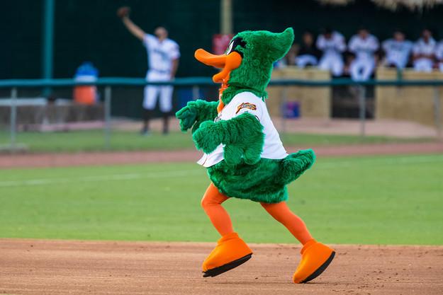 Dewd duck.jpg