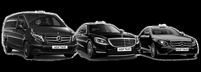 taxis lyon taxi lyonnais taxi van lyon.p